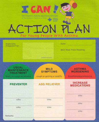 asthma action plan The Asthma Action Plan Asthmatic - plan of action template