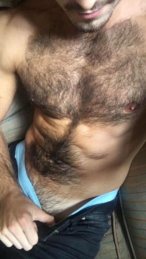 hairy hunter photo hairy is sexy pinterest. Black Bedroom Furniture Sets. Home Design Ideas