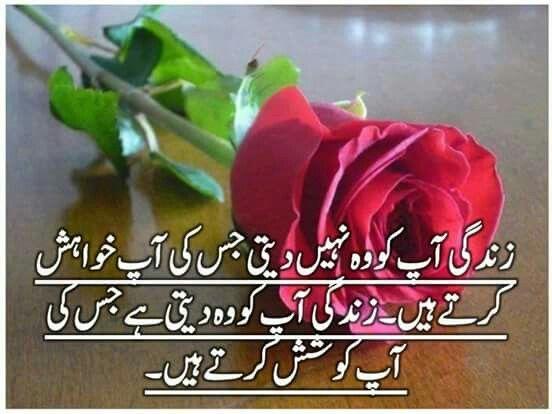 Ankay Kul Di Hai Image By Hafsa Umar Jokes Quotes Funny Joke