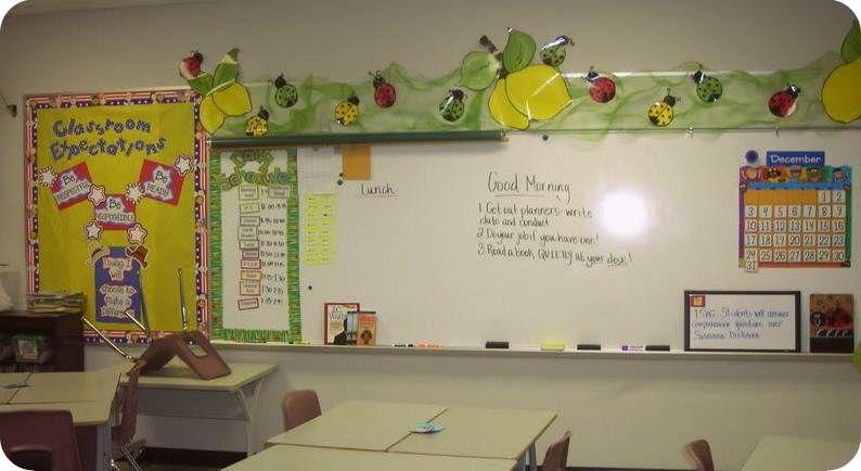 Garden/Bug themed classroom