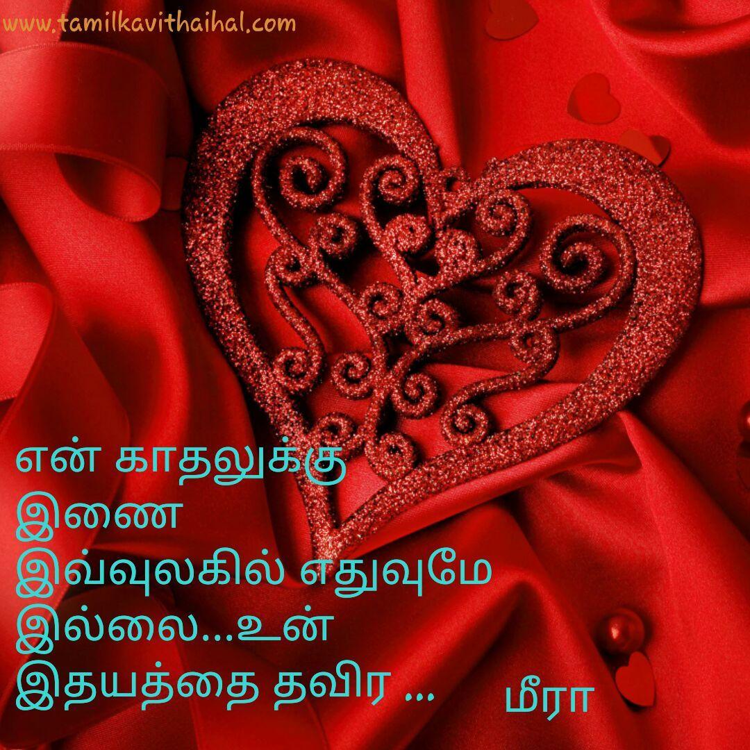En Kadhal Inai Illai Un Idhayam Thavira Rose Red Meera