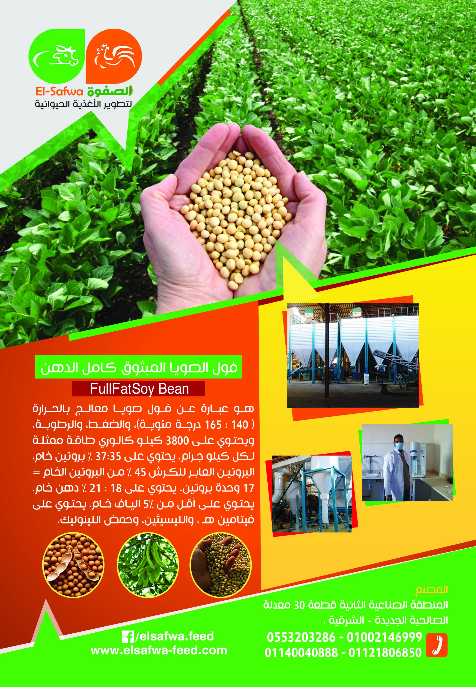 الصفوة لتطوير الأغذية الحيوانية من أكبر مصانع الأعلاف فول الصويا المبثوق كامل الدهن يتخصص المصنع فى إنتاج منتجات الصويا المطورة والمحورة ب Beans Wic 45th