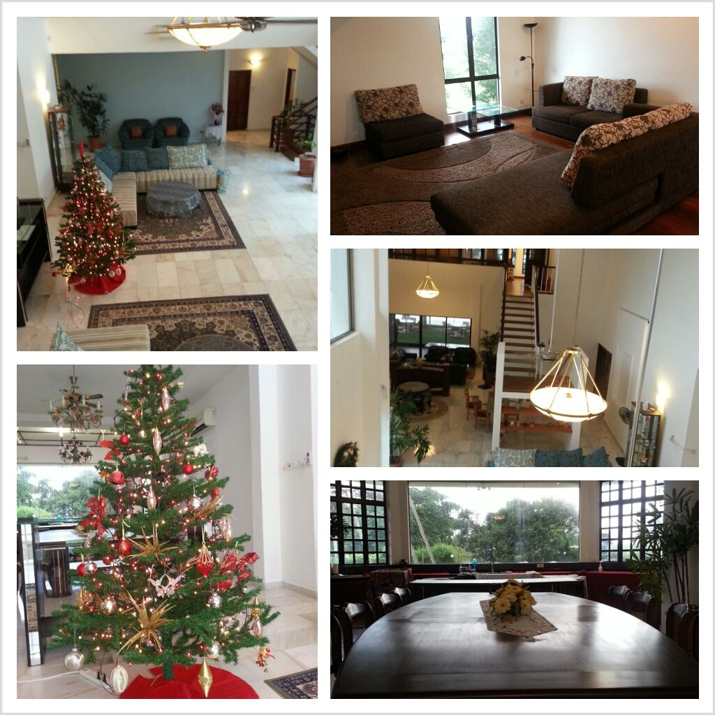 A spaces and gorgeous interior of the villa, with a decorated Christmas tree for the occasion. 宽敞的空间,华丽的装修,带出了别墅的气派。客厅里还装饰着一棵应景的圣诞树。