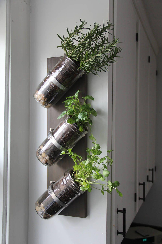 Indoor herb garden mason jar herb garden mason jar decor