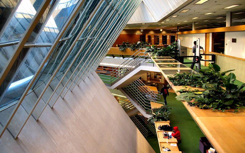 Even underground, the Law School looks great! Windows peak