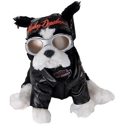 Harley Davidson Dog Sprocket Ebay Hdnaughtylist Harley