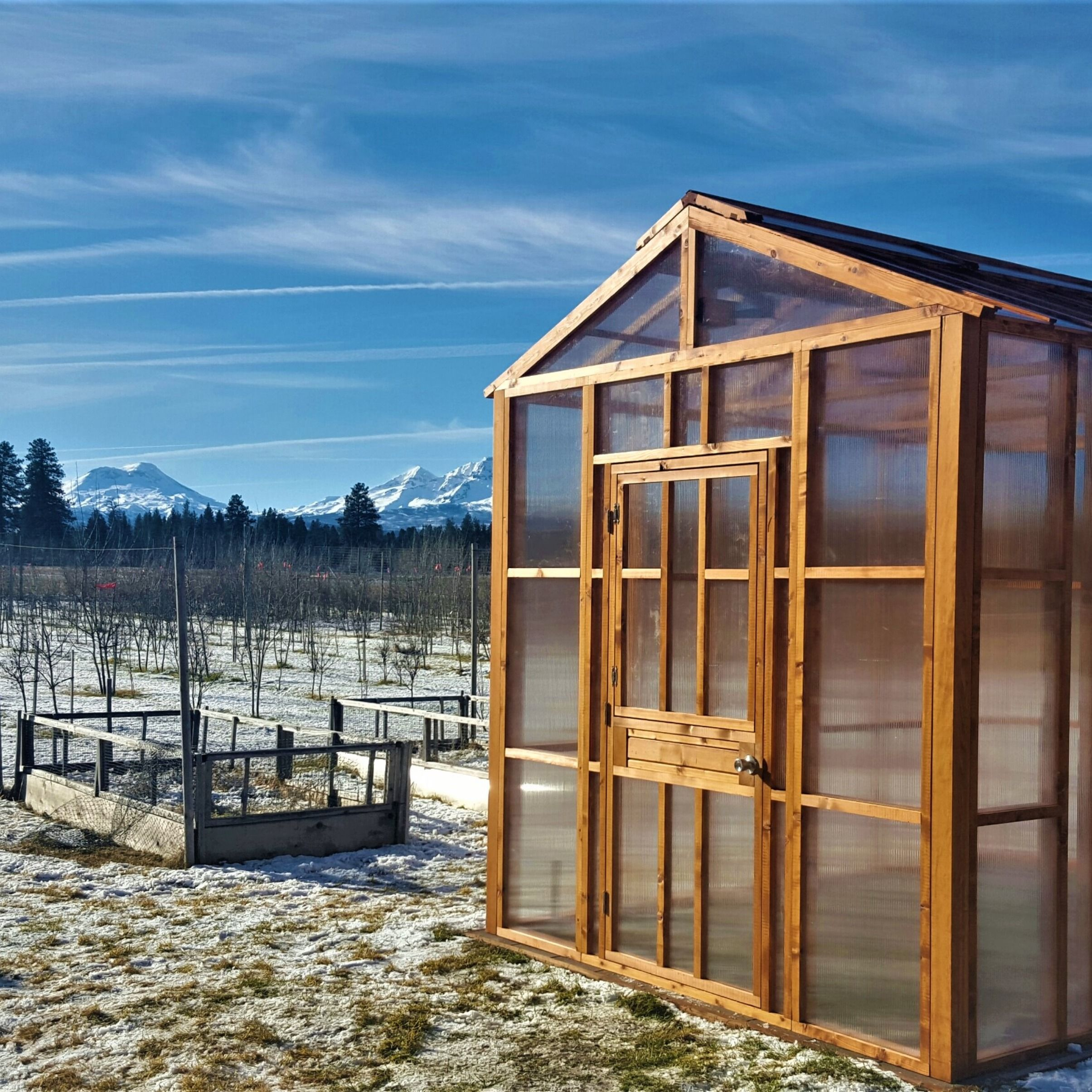 8X8 Lifestyle Diy Greenhouse Available Direct From Nw 400 x 300
