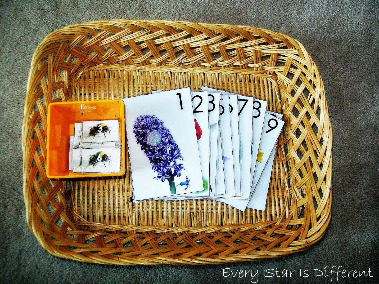 Insect Unit For Tots With Free Printables
