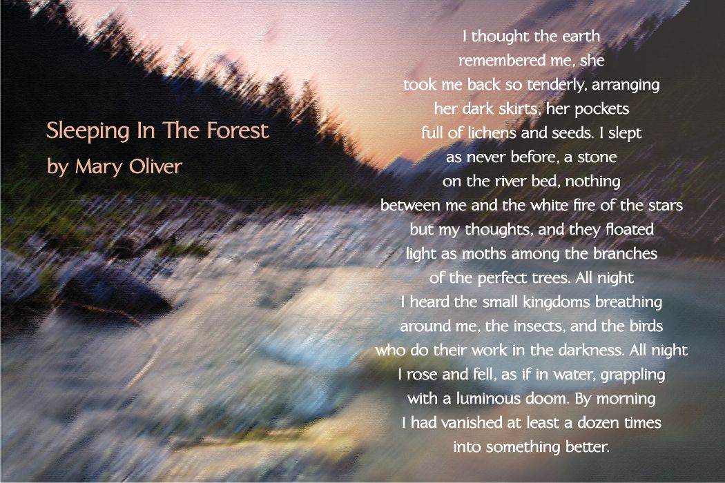Winter Solstice Poems Mary Oliver 1