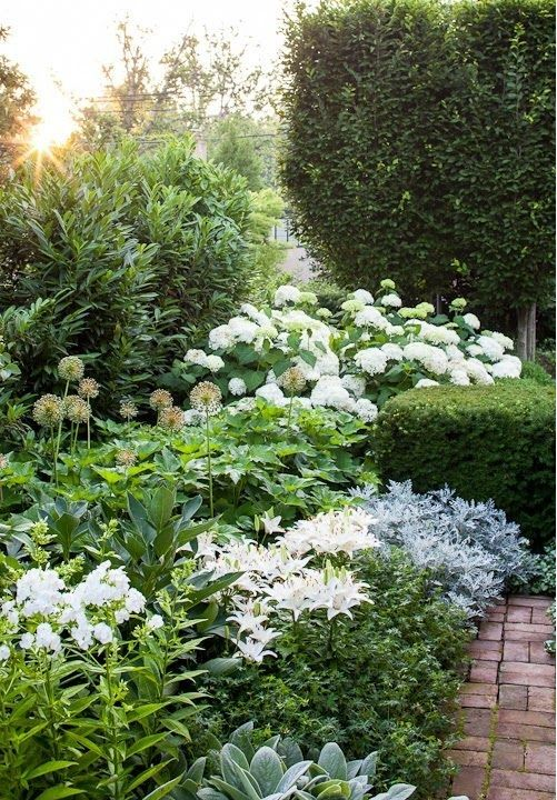 Pin von Linda Lewis auf Flower Gardening Ideas   Pinterest   Gärten ...