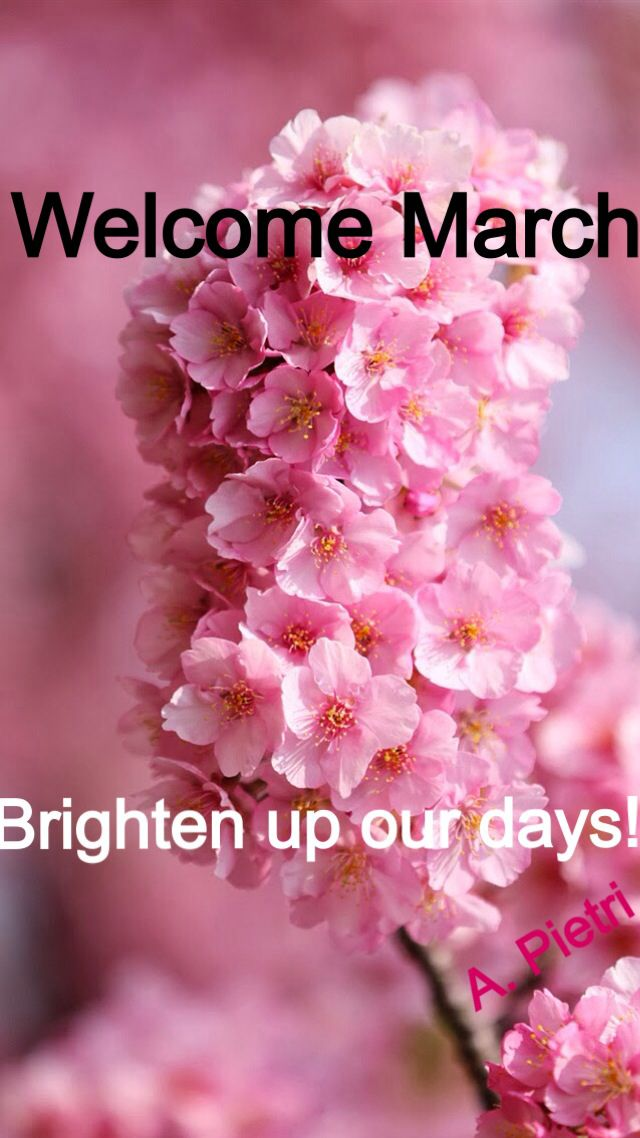 Welcome March Beautiful Flowers Pretty Flowers Pink Flowers