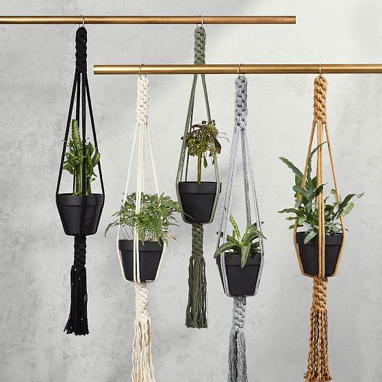 Filament Plant Hangers