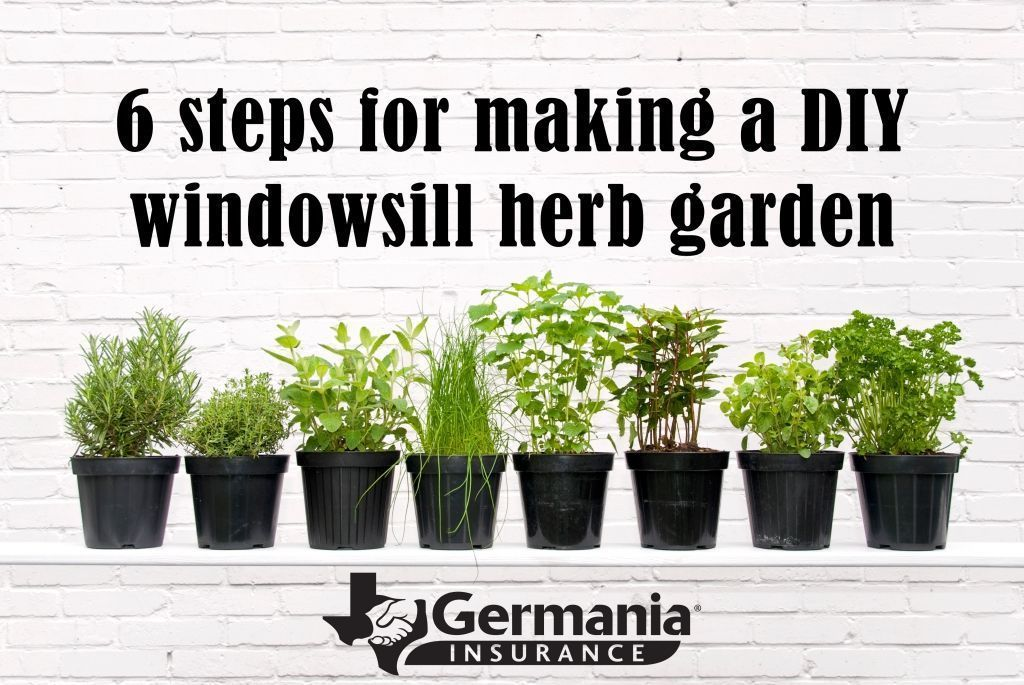 46 Perfect pictures Diy window herb garden #kleinekräutergärten 46 Perfect pictures Diy window herb garden #windowherbgardens 46 Perfect pictures Diy window herb garden #kleinekräutergärten 46 Perfect pictures Diy window herb garden #kleinekräutergärten