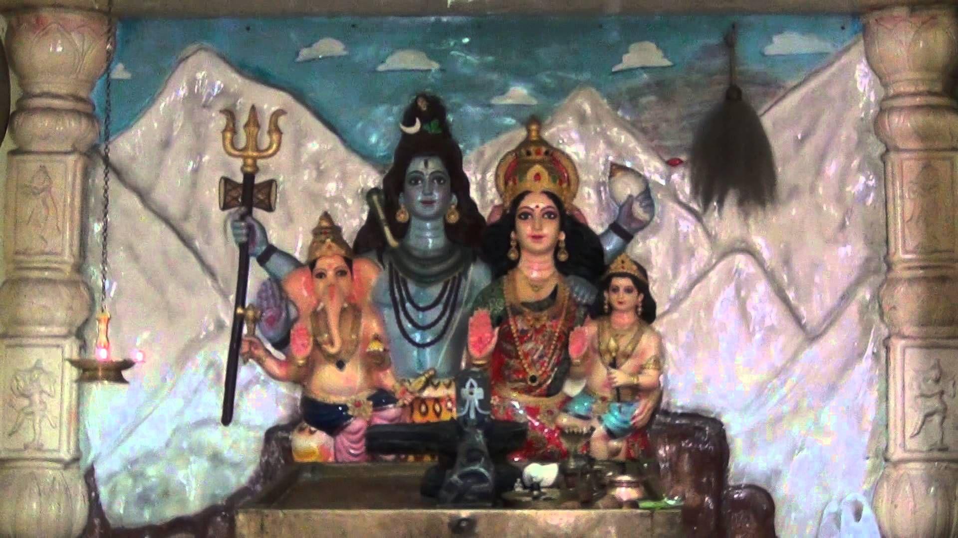 Ekadasa Vara Nitya Rudrabhishekam 03rd March 2014