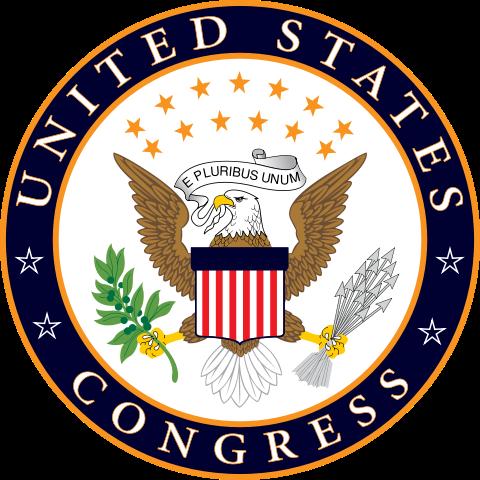 Checks And Balances Protecting Liberty Beyond Separation Of Powers Check And Balance United States Symbols Kids Web