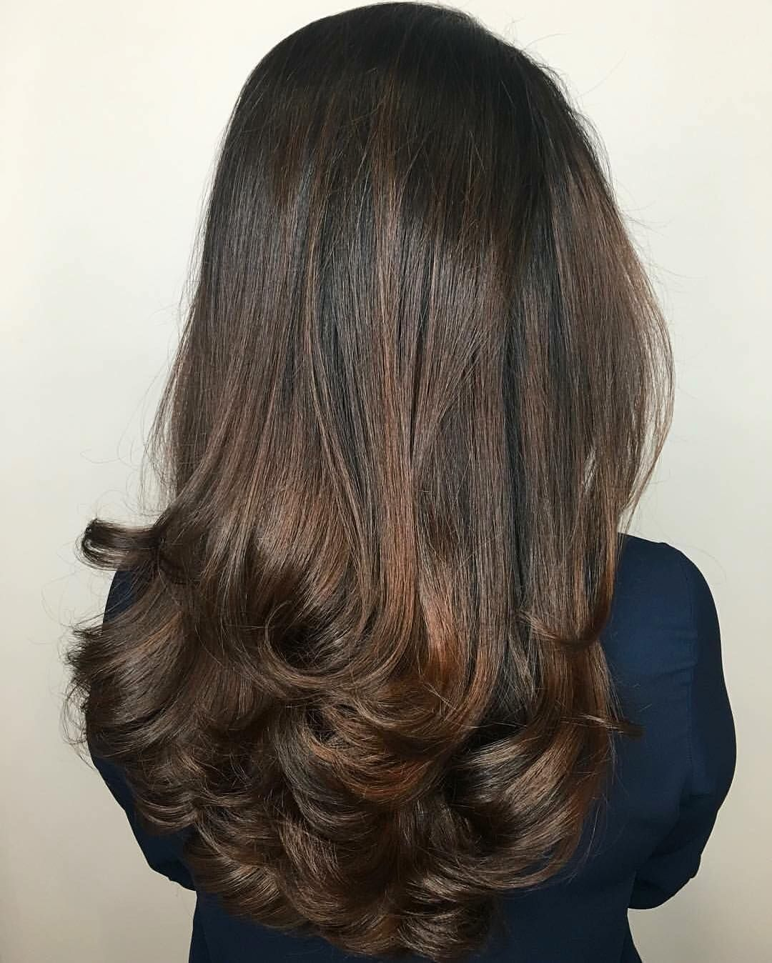 Chestnut Brown Dimensional Highlights Aveda Hair Color