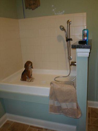 Dog Washing Station Dog Wash Dog Washing Station Puppy Shower