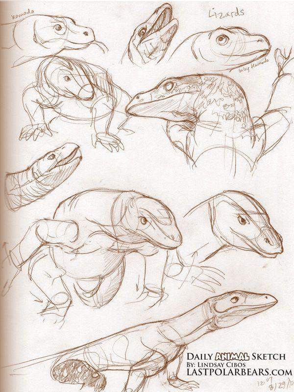 Lizards | dibujos | Pinterest | Ideas para dibujar, Garabatos y Para ...
