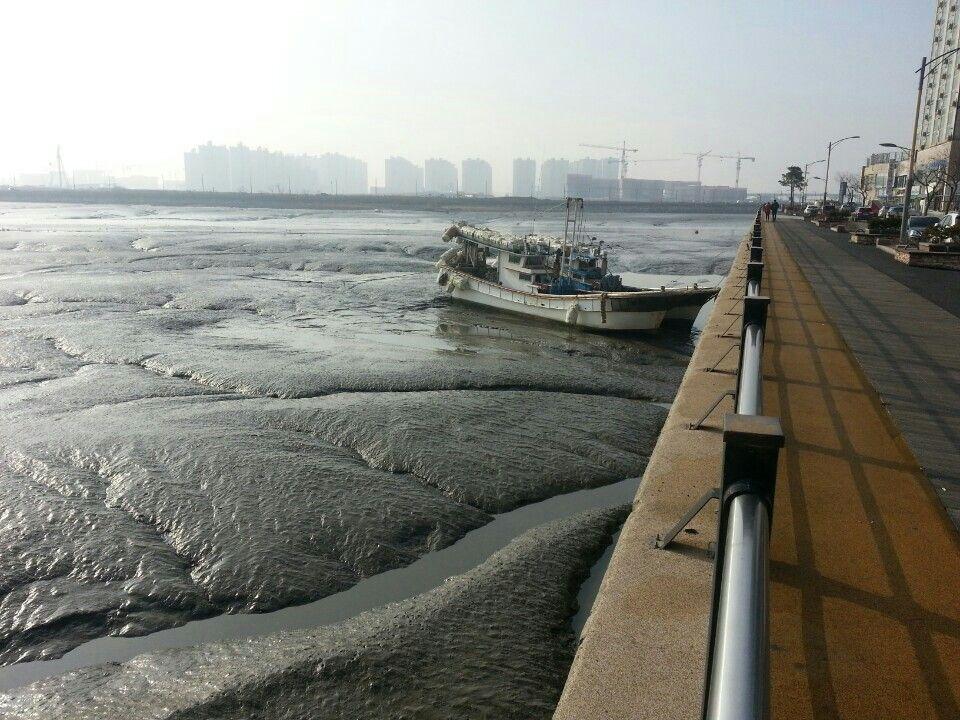 KOREA 월곶 물빠진뒤