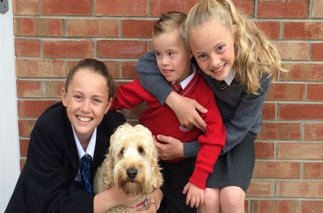In True Lassie Like Fashion A Family S Pet Cockapoo Saved A Little Boy In Northern Ireland Who Was Trapped In A Dryer Cavapoopuppies Dog Family Dogs Do