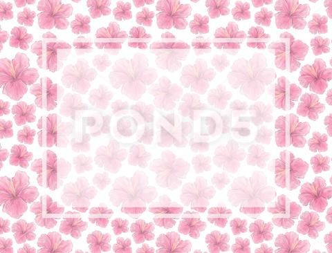 Watercolor pink flowers blossoms background. Wedding card, celebration, invit Stock Photos ,#blossoms#background#flowers#Watercolor