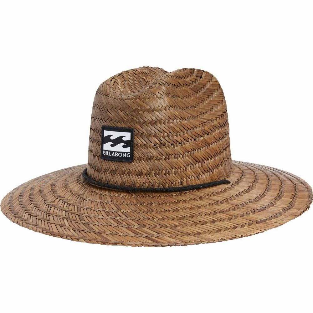 495a7943ced84 Mens Outdoor Work and Garden Straw Hat