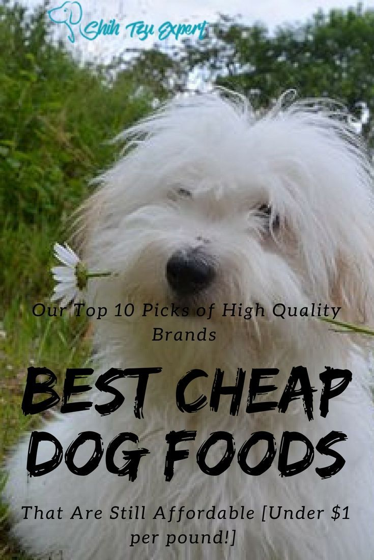 Best cheap dog foods our top 10 picks of high quality