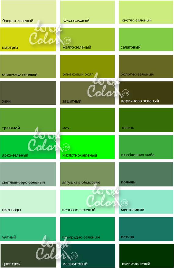 все оттенки зеленого цвета фото онлайн | Оттенки зеленого