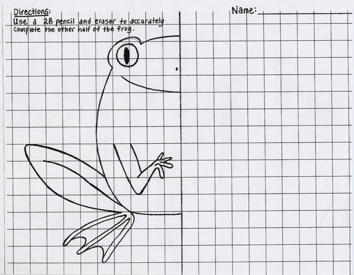Have students finish the second half of the frog and then have – Drawing Worksheets