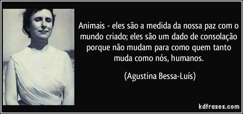 Animais são a medida da nossa paz com o mundo criado. DUDA