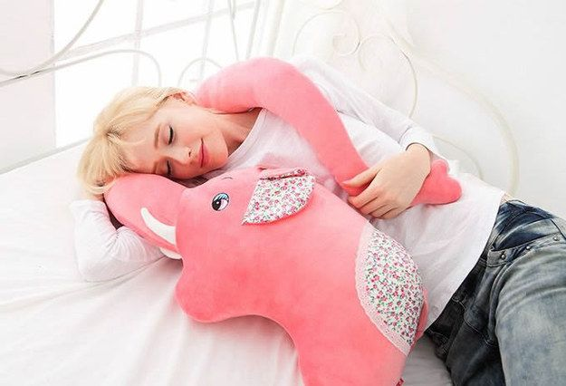 An elephant who wants to hug you with her trunk. @marianiscesar @jimenacesar para cuando las extrañe!