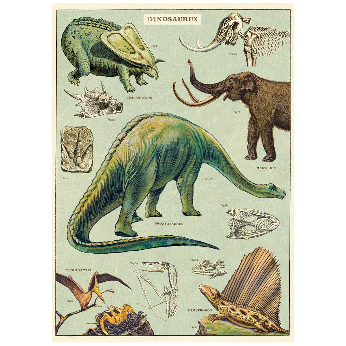 Dinosaurs Species Chart Vintage Style Poster Dinosaur Posters Dinosaur Illustration Dinosaur Images