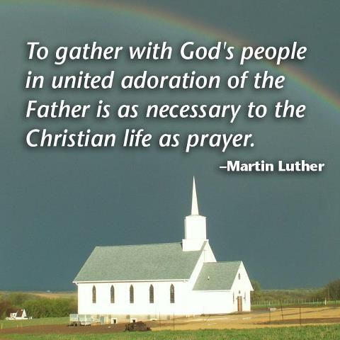 Luther Quote Reformed Theology Quotes Church Quotes Bible Promises