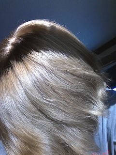 Inspirational Dirty ash Blonde Hair Color