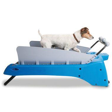 I need this for Sammy!! haha