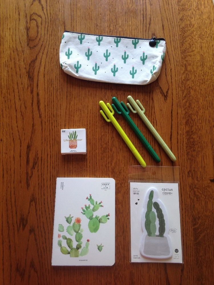 Cactus School Pack Assignment Notebook Cactus Pens Stickers Pencil Case Notepad
