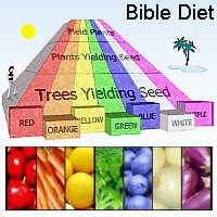 I Want To Know More Bible Diet Biblical Diet Daniel Diet
