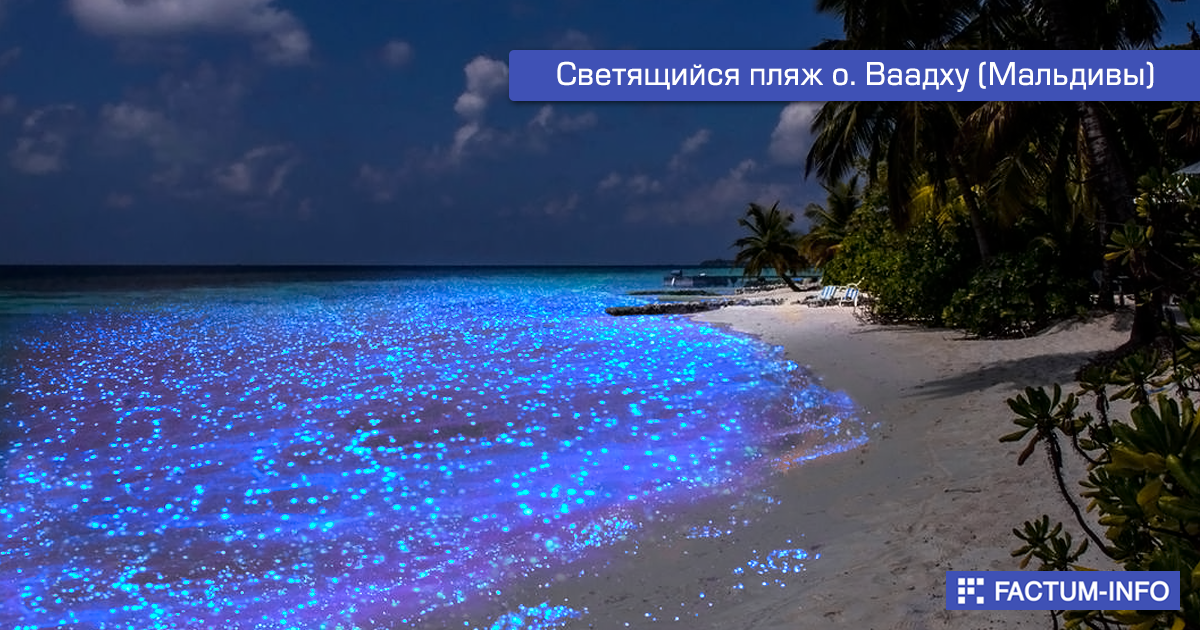 ➡️ https://factum-info.net/interesnoe/foto/288-samye-neobychnye-plyazhi-mira  #факты #интересныефакты #путешествие #туризм #пляж #интересно #FactumInfo