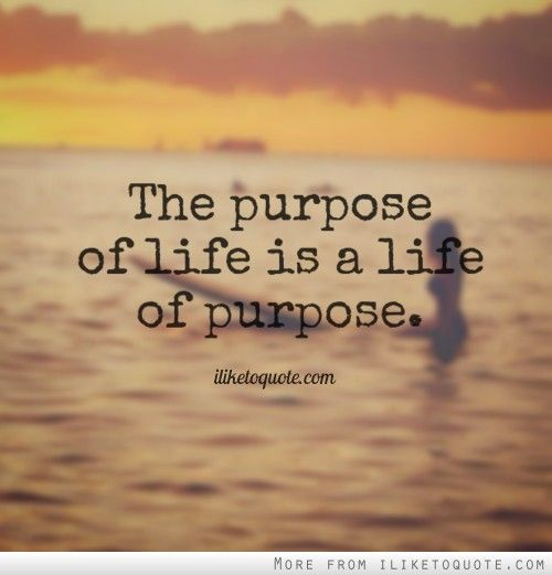 The Purpose Of Life Is A Life Of Purpose Love Pinterest Stunning Life Purpose Quotes