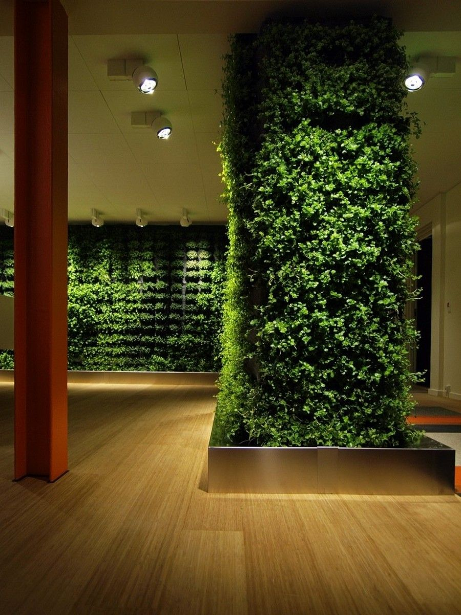Garden rich vertical greenery climbing on wall design plus picture of cool indoor garden idea and ceiling light fixture charming indoor garden ideas to