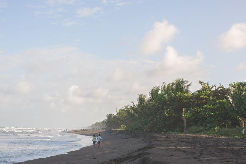 Costa Rica : TORTUGUERO