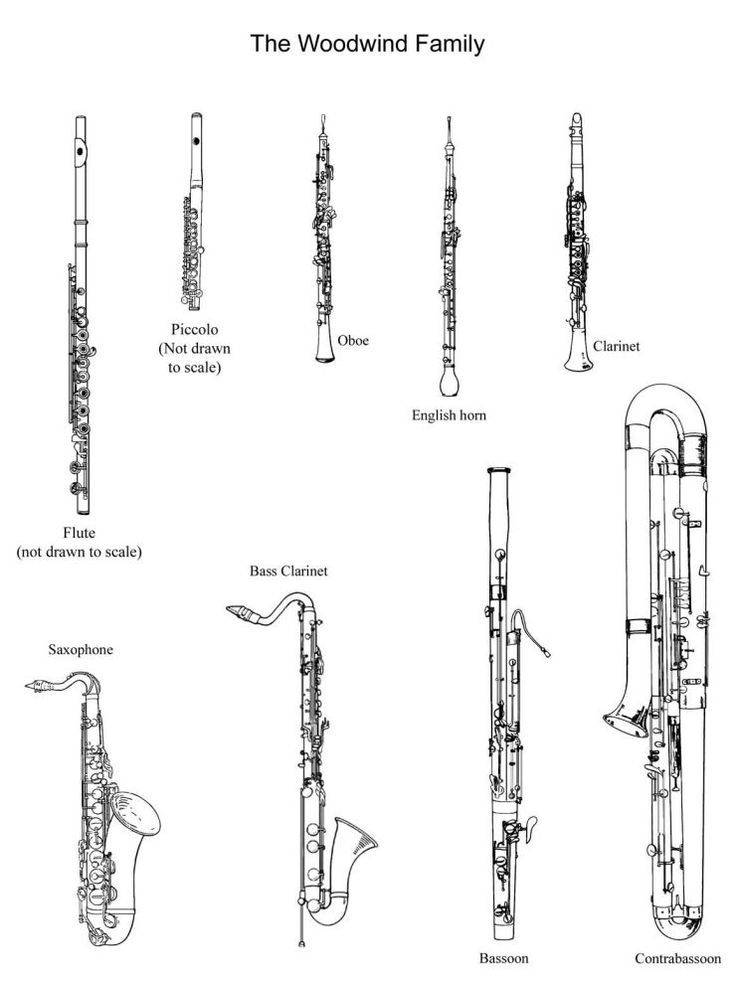 Pictures Of The Woodwind Family To Cut Out And Color Great Have Students Write