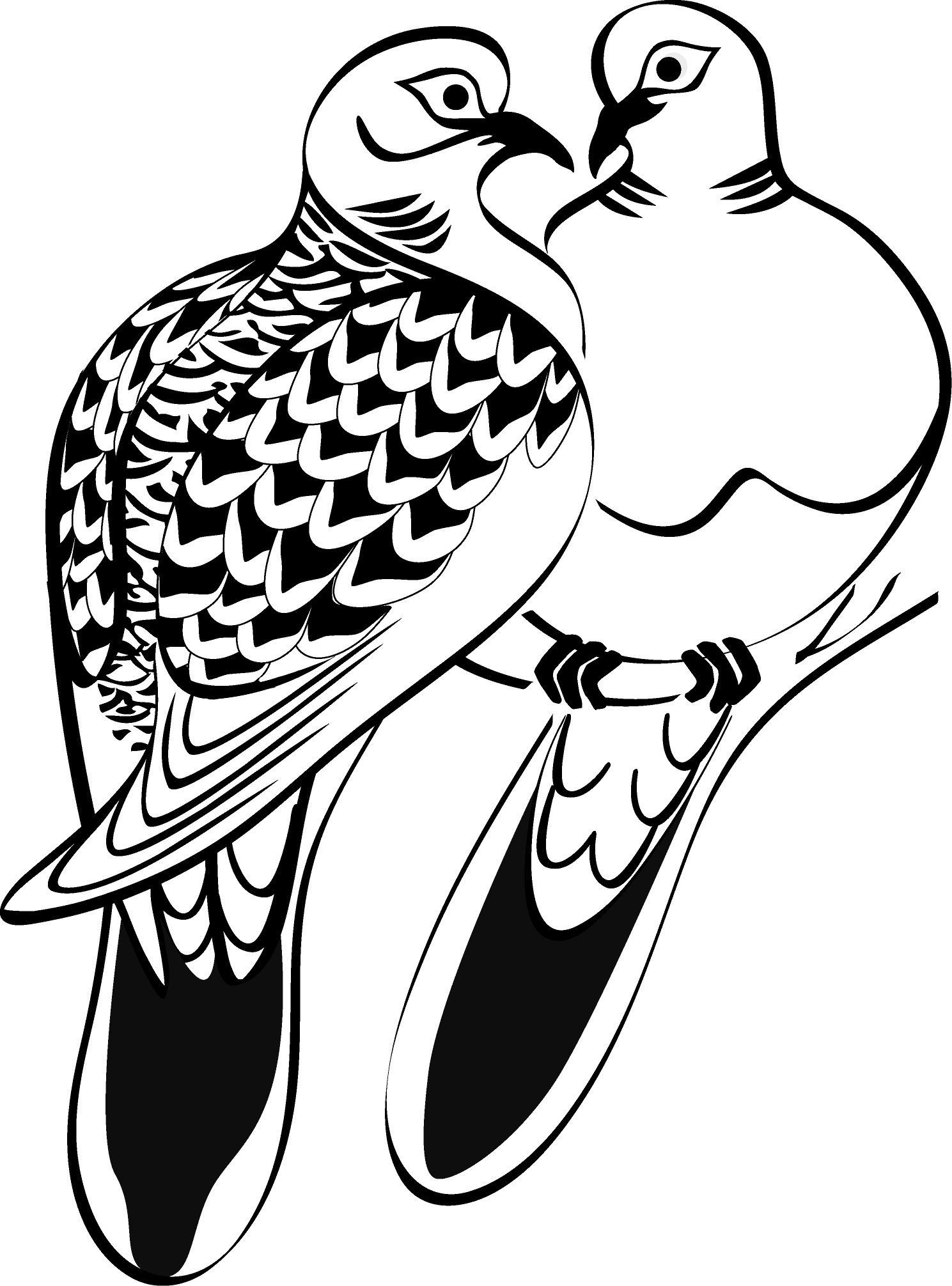 Two Turtle Doves Coloring Page Youngandtae Com Turtle Coloring Pages Turtle Dove Doves