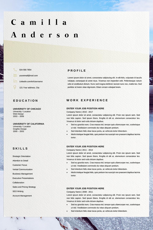 Marketing Resume Template Job Resume Template Camilla