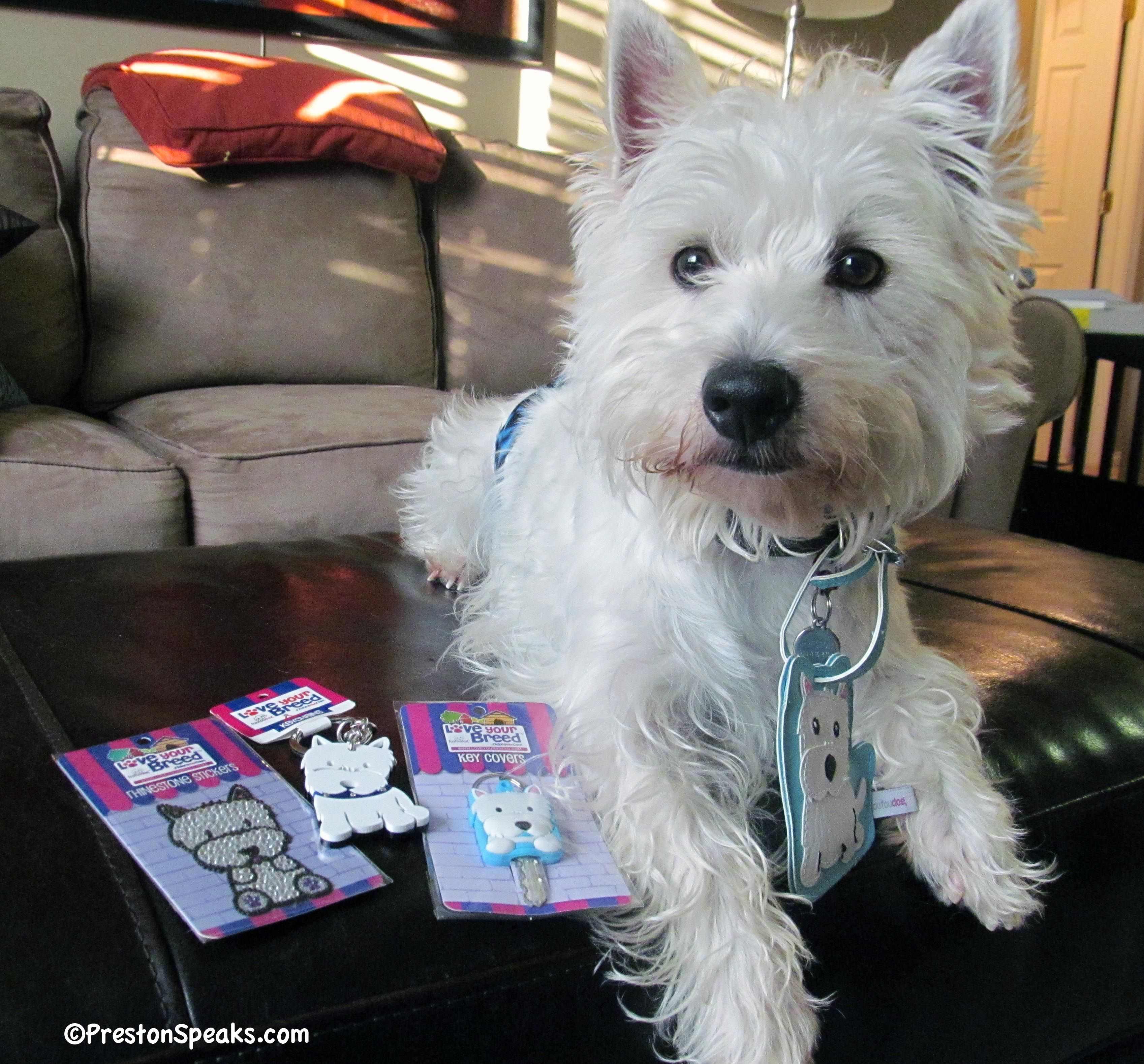 Foufou Dog Love Your Breed Review And Giveaway Closed