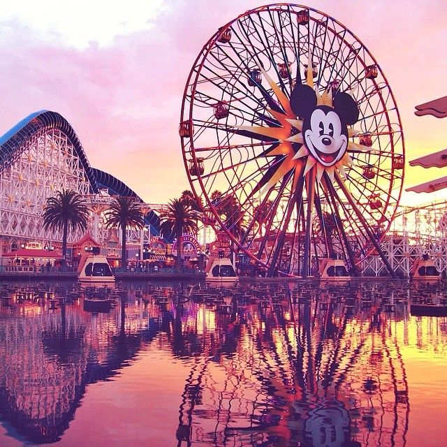 Once at dinner I took about 10 pictures of Mickey's Fun Wheel from the same spot over a span of about an hour and a half. Each photo is so drastically different! They're some of my favourite from the trip. #mickey #mickeymouse #dca #californiaadventure #dlr #disneyland #paradisepier #arielsgrotto #sunset #redskyatnight #mickeysfunwheel #disnify #love #best #disneygram #instadisney #disneyparks #disney #disneylove #Anaheim #california #californiasky