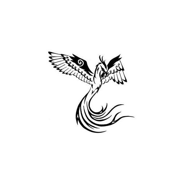 tatouage phoenix tribal walla be bonn liked on polyvore. Black Bedroom Furniture Sets. Home Design Ideas