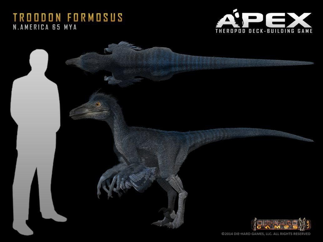 troodon formosus by herschel hoffmeyer with a brain to body size