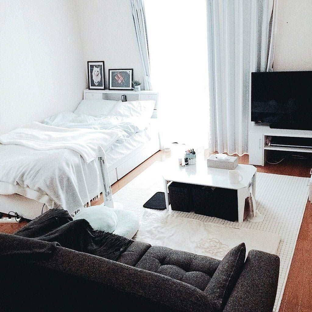 Savvy and Inspiring 1 bedroom apartments under 500 near me