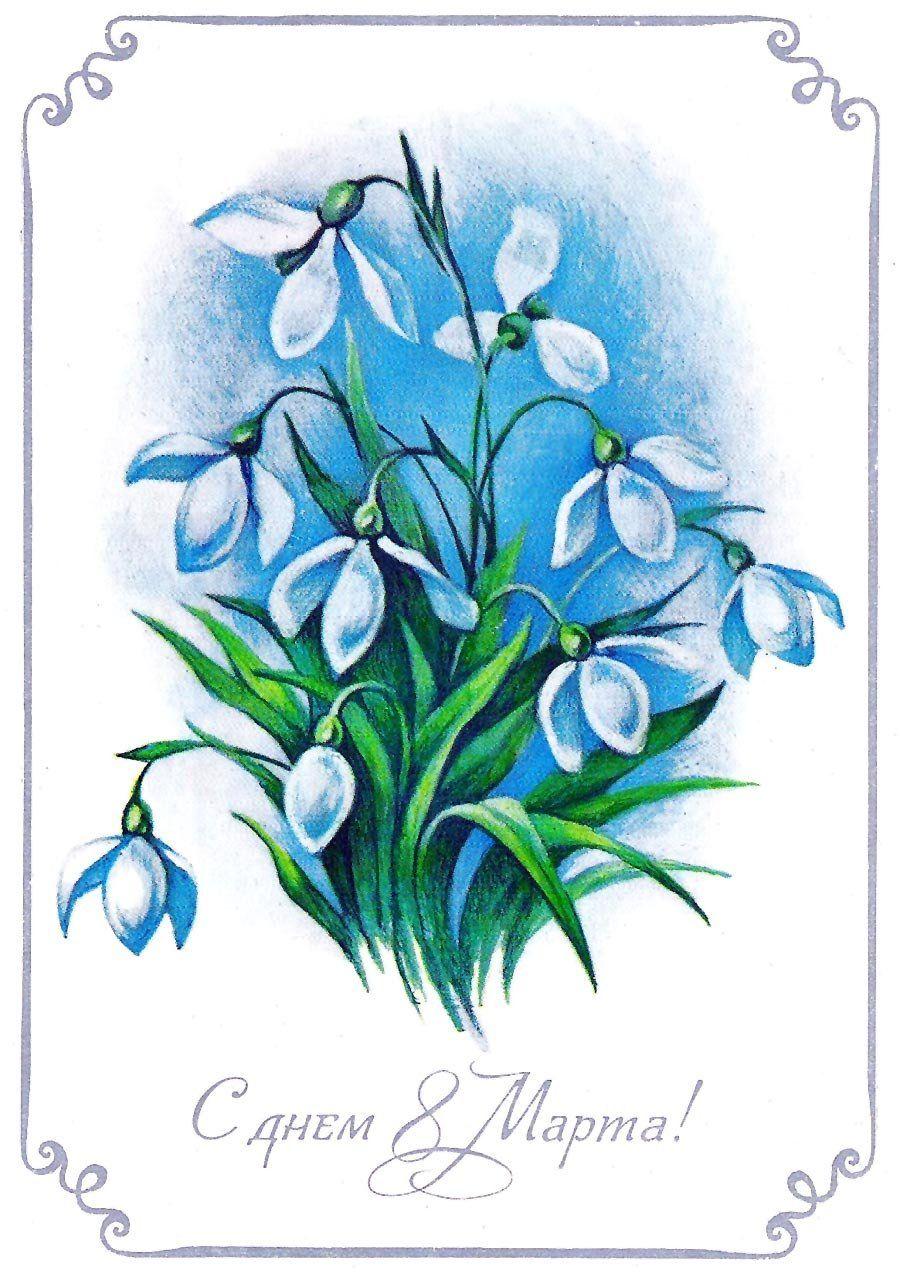 Vosmoe Marta 509 Akvarelnye Otkrytki Otkrytki I Cvety
